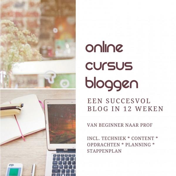 online cursus bloggen